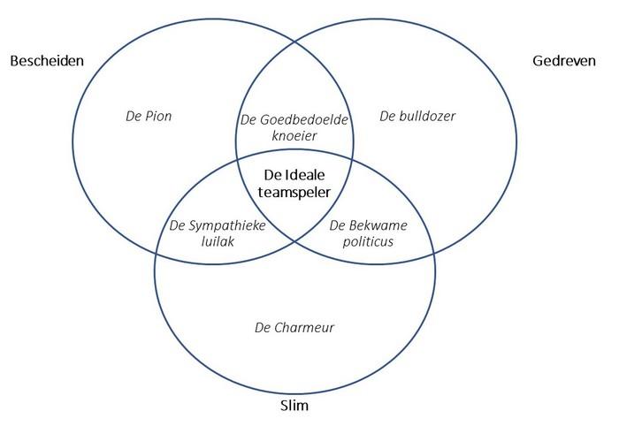 Model De Ideale teamspeler